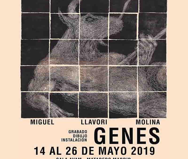 GENES de Miguel LLavori en Extensión AVAM